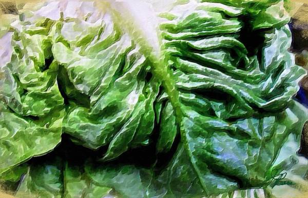 Painting - Lettuce by Joan Reese