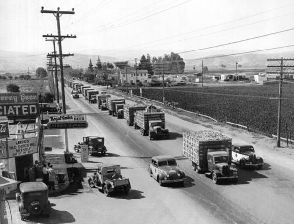 Wall Art - Photograph - Lettuce Truck Armed Escorts by Underwood Archives