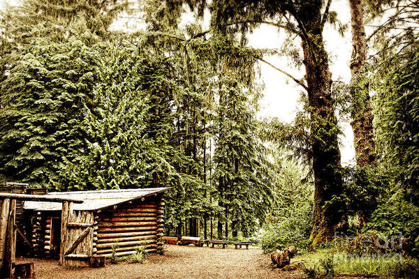 Photograph - Lewis And Clark's Fort Clatsop In The Old Growth Forest by Lincoln Rogers