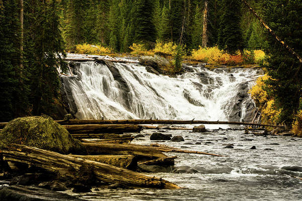 Photograph - Lewis Falls Yellowstone by TL Mair