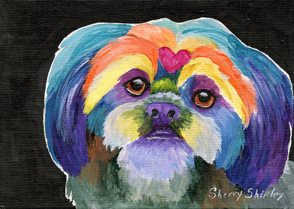 Painting - Lhasa Rainbow by Sherry Shipley