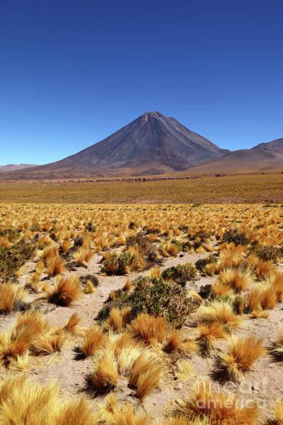 Photograph - Licancabur Volcano And Puna Grassland Chile by James Brunker
