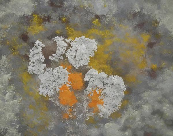 Digital Art - Lichen Bouqet by Matt Cegelis
