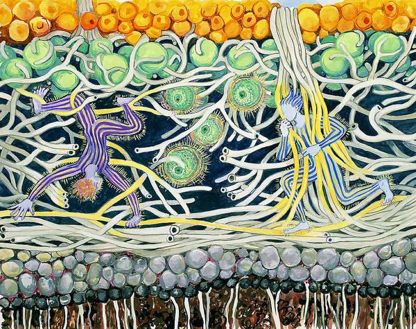 Lichen Playground Art Print