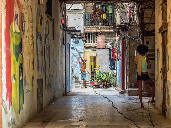 Photograph - Life In The Alleyway by Robin Zygelman