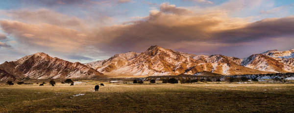 Photograph - Life In The Sevier Valley by TL Mair