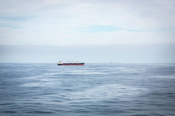 Photograph - Life In The Shipping Lane by Raelene Goddard