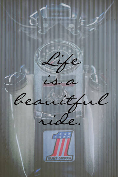 Photograph - Life Is A Beautiful Ride by Susan Rissi Tregoning