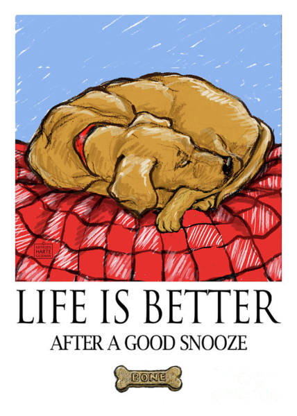 Sleep Mixed Media - Life Is Better After A Good Snooze Greeting Card by Kathleen Harte Gilsenan