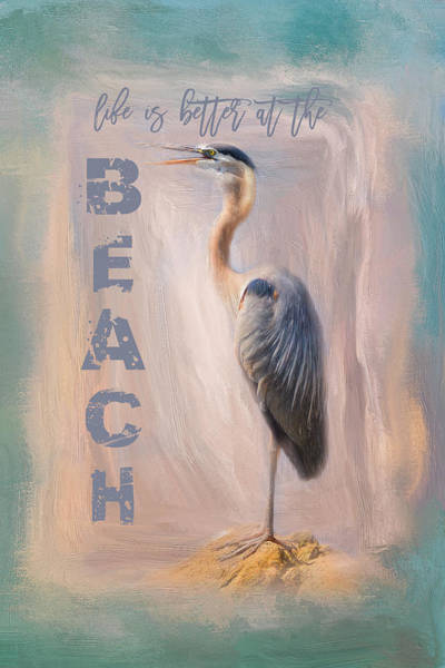 Photograph - Life Is Better At The Beach - Ocean Bird Art by Jai Johnson