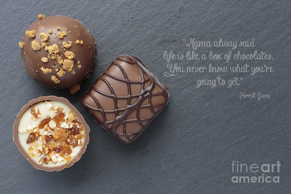 Wall Art - Photograph - Life Is Like A Box Of Chocolate Forest Gump Quote by Edward Fielding