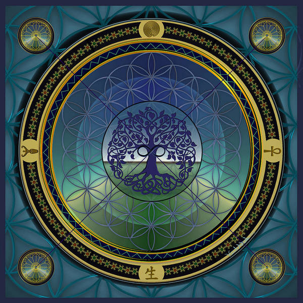 Digital Art - Life Mandala by Vincent Autenrieb