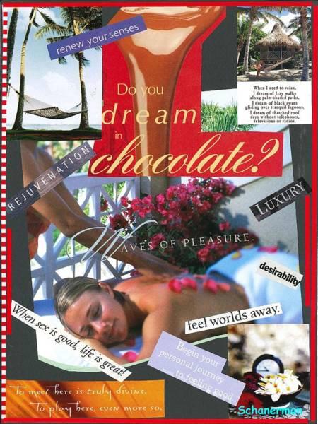 Mixed Media - Life Of Luxury by Susan Schanerman