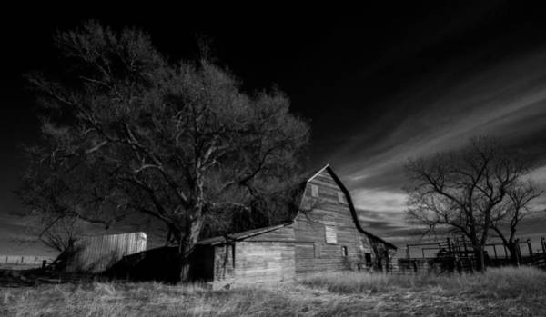 Wall Art - Photograph - Life On The Farm - Logan County Colorado by Bridget Calip