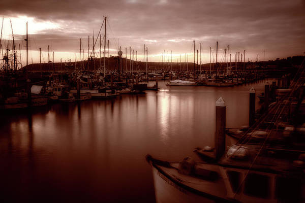 Half Moon Bay Photograph - Life Through My Rose Colored Glasses by Marnie Patchett