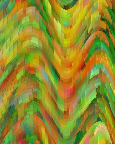 Cheery Digital Art - Life's A Rollercoaster by Bonnie Bruno