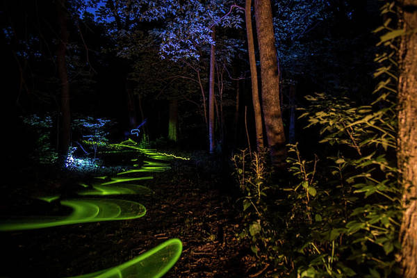 Photograph - Lighit Painted Forest Scene by Sven Brogren
