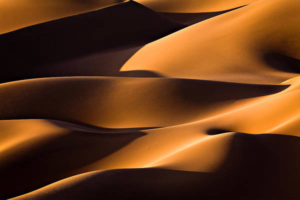 Wall Art - Photograph - Light And Shadow by Mohammadreza Momeni