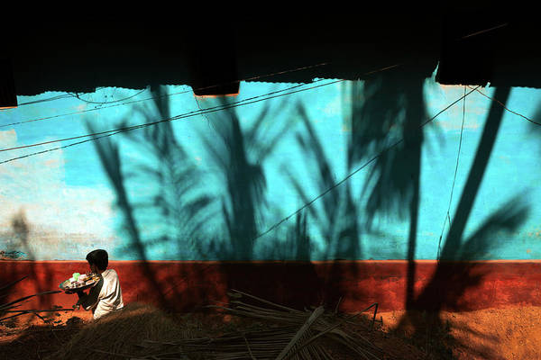 Photograph - Light And Shadows by Marji Lang
