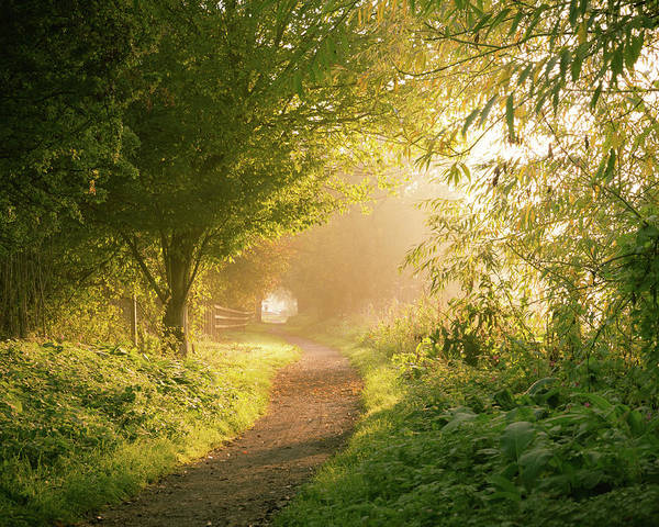 Nottinghamshire Photograph - Light At The End Of The Tunnel by Chris Dale