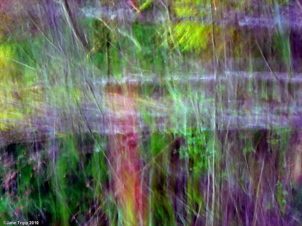Wall Art - Photograph - Light Covers The Hills  by Jane Tripp