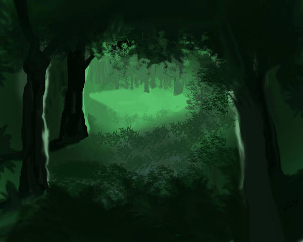 Digital Art - Light In The Forest by Walter Chamberlain