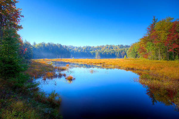 Photograph - Light Mist Over Cary Lake by David Patterson