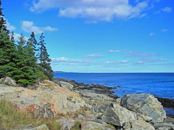 Digital Art - Light On Acadia Shores by Lynda Lehmann