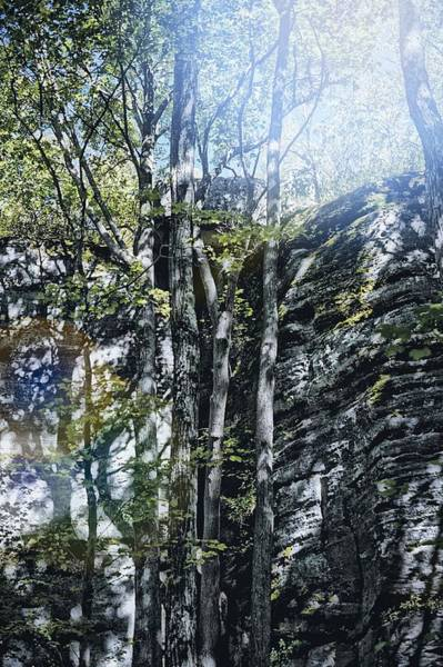 Wall Art - Photograph - Light On Rimrock  by Shelley Smith
