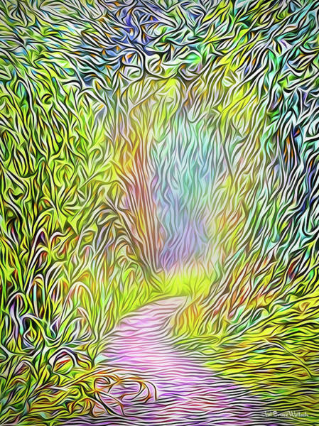 Digital Art - Light On The Path by Joel Bruce Wallach