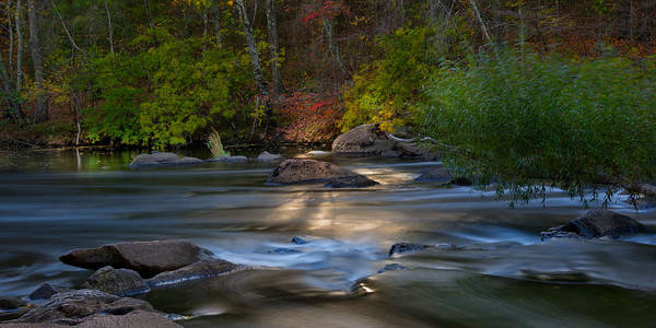Photograph - Light On The River by Robin-Lee Vieira