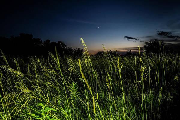 Photograph - light Painted Prairie Grass at dusk  by Sven Brogren