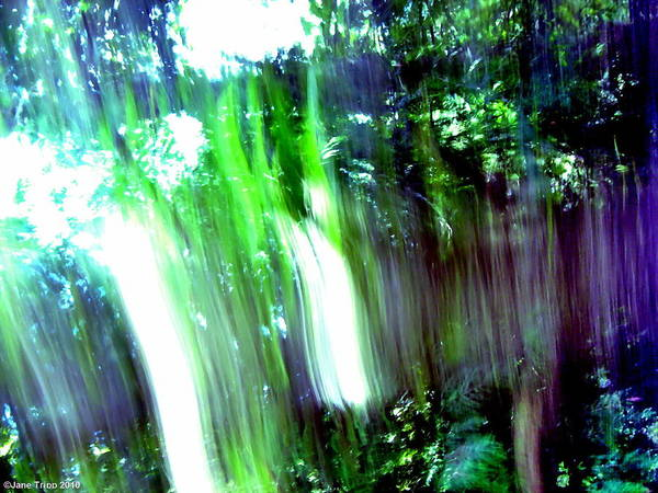 Wall Art - Photograph - Light Rushes In by Jane Tripp