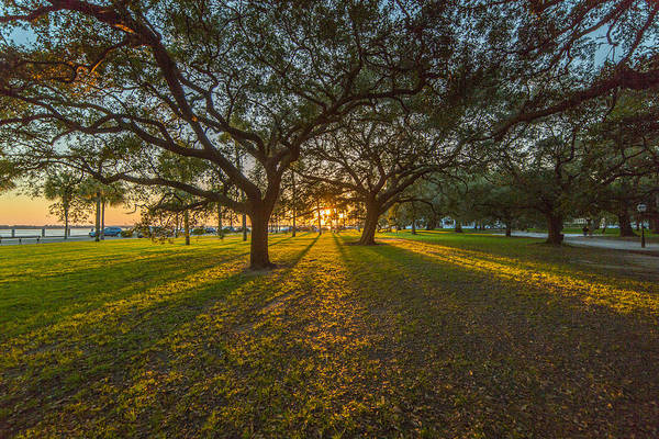 Photograph - Light Shines Through by Donnie Whitaker