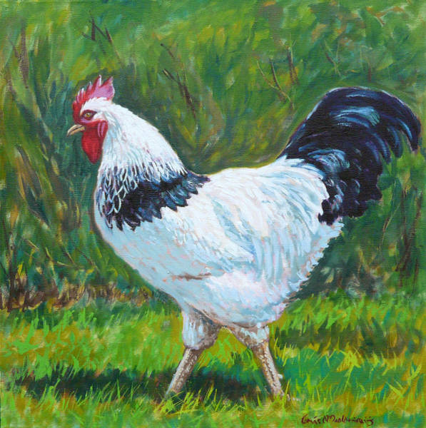 Breeding Painting - Light Sussex Rooster by Tomas OMaoldomhnaigh