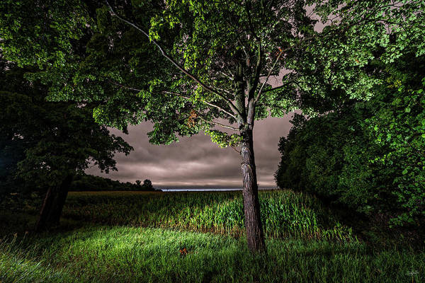 Photograph - Light Within Dusk by Doug Gibbons