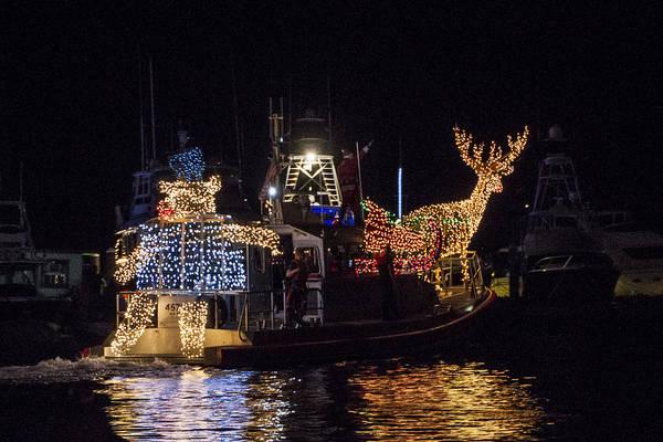 Photograph - Lighted Boat Parade 5 by Bob Slitzan