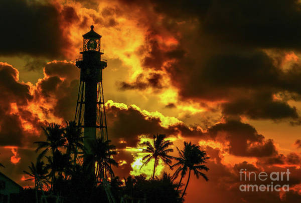 Photograph - Lighthouse And Palm Trees by Tom Claud