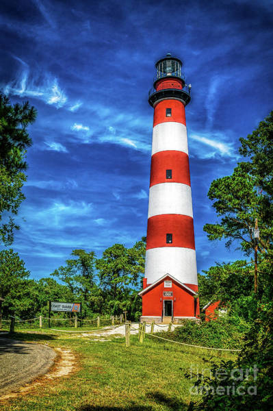 Photograph - Lighthouse At Chincoteague by Nick Zelinsky