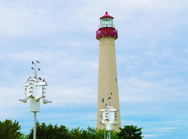 Photograph - Lighthouse - Birdhouse - Cape May New Jersey by Bill Cannon