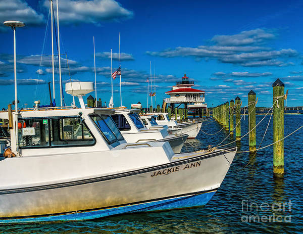 Photograph - Lighthouse In The Marina by Nick Zelinsky