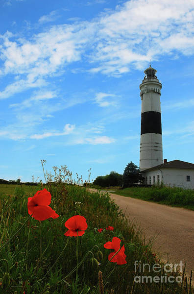 Photograph - Lighthouse Kampen by Hannes Cmarits