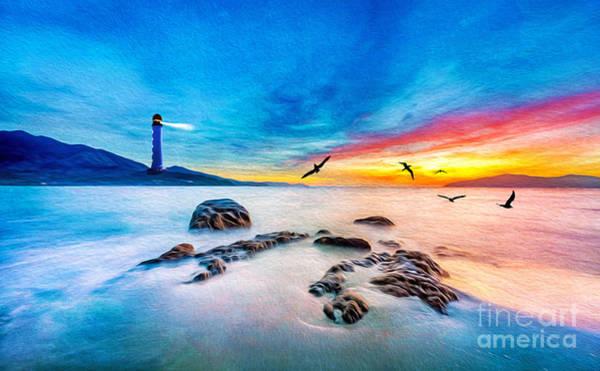 Shorebird Photograph - Lighthouse Light by Laura D Young