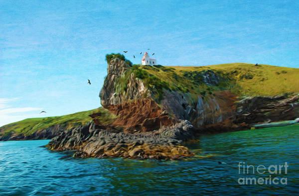 Shorebird Photograph - Lighthouse On Cliff Dunedin New Zealand by Laura D Young
