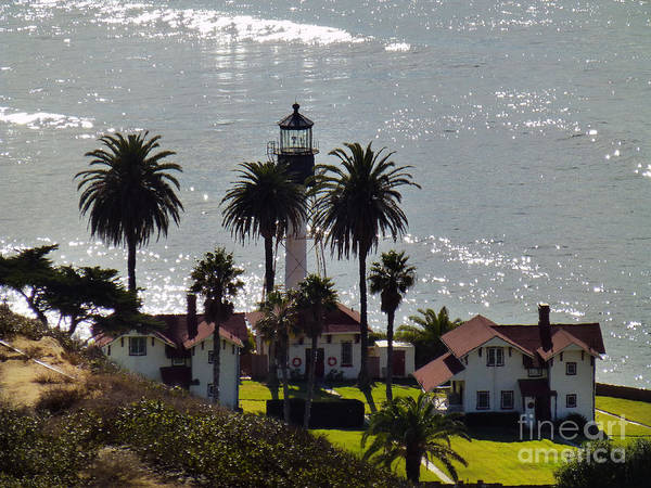 Photograph - Lighthouse On Pt Loma, Sandiego  by Steven Spak