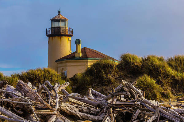 Wall Art - Photograph - Lighthouse With Driftwood by Garry Gay