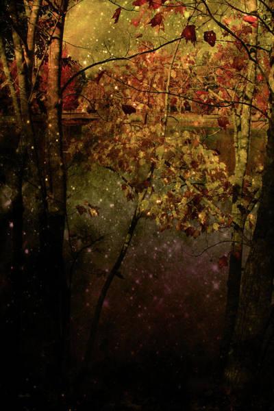 Photograph - Lighting Bugs 2 Art by Lesa Fine