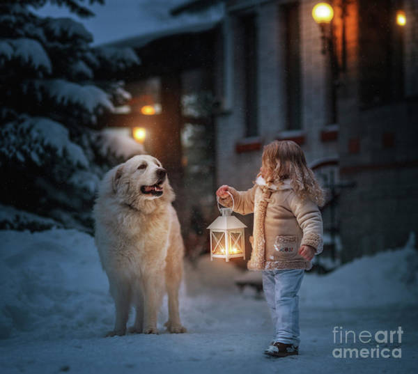Great Pyrenees Photograph - Lighting The Way by Andy Seliverstoff
