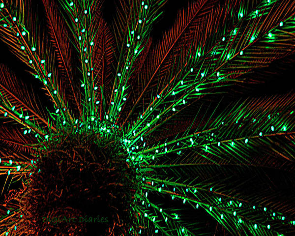Palm Frond Digital Art - Lights Beneath The Fronds by DigiArt Diaries by Vicky B Fuller
