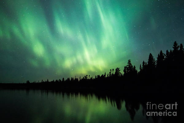 Photograph - Lights Over Moose Lake by Lori Dobbs